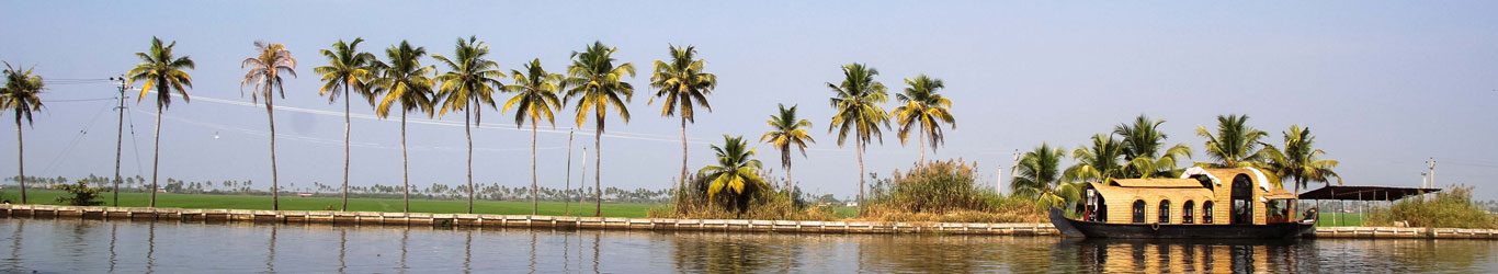 bonjour-holidays-magic-kerala